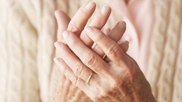 Ledbrosk från kor kan bli behandling vid artros